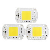 LUSTREON 10W / 20W / 30W Pure White COB LED Licht DIY Chip geliefert von Batterie Solar Panel