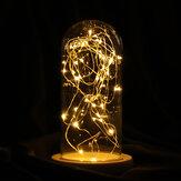 9 * 20cm verre Dome socle en bois d'affichage cloche de bocal avec fée LED lumières décorations
