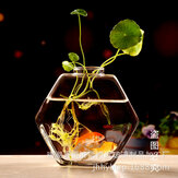 17cm Clear Glass Table Vase Hexagonal Plant Flower Pot Water Hydroponics Desktop Planter Decor