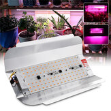 Vollspektrum 50W 100W LED Pflanzenblume Grow Flood Light Spotlight Außenleuchte AC220V