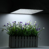 225LED Grow Light White Lámpara Panel hidratónico ultrafino para interiores Planta Veg Flower AC85-265V