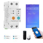 2P 63A eWelink Single Phase Din Rail WIFI Smart Switch Energy Meter Leakage Protection Remote Read KWh Meter Wattmeter Works with Alexa Google