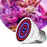 E27 LED Bitki Büyüme Işığı 48/60/80 LED Kapalı Hidroponik Çiçekler Fideleri Büyümek Işık Lamba Ampul için Veg Bloom Kapalı Bitki