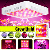 600W Vollspektrum LED Grow Light SMD3030 Wachstumslampe für Hydrokulturanlage + 2 Lüfter