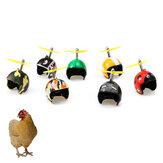 1 Adet Tavuk Kask Pet Kuş Sert Koruyucu Şapka Pet Taşıyıcıları Malzemeleri
