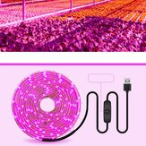 USB Full Spectrum Planta Growth Light com 5V Switch Planta Growth Light Strip 2835 Full Spectrum Planta Light Strip