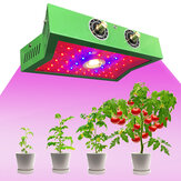 1200W Full Spectrum LED Plant Grow Light for Indoor Flower Vegetable 85-265V