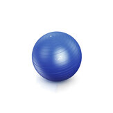 55cm Pilates Yoga Ball Soft Ball Gym Fitness Core Exercise Tools + Air Pump