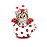 Cat 5D Full Diamond Painting Embroidery Cross Stitch Home Decor