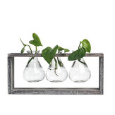 Wood and Glass Creative Hydroponic Living Room Decoration Flower Pot Plant Vase