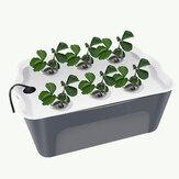 Haushalt 6 Löcher Hydroponische Gemüsesämlingsbox Bodenlose Kultivierungsausrüstung Automatischer Artefakt-Blumentopf