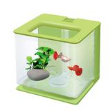 Aquarium Aquarium Klein Fokken Acryl Box Broederij Incubato Groeien Zaailingen Reproductie Houder