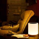Dimbaar Touch LED-nachtlampje USB opladen Colorful Slaapkamer Tafellamp Decor Kindercadeau