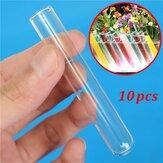 10 Adet 12x75mm Laboratuar Kimyası Züccaciye Borosilikat Cam Öğretme Test Tüpleri