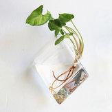 ウォールマウント菱形ガラス花瓶ホームガーデン結婚式パーティーデコレーション