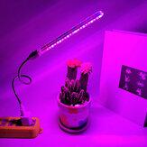 10W 21 LED Grow Light Innendørs USB Plant Grow Lampe Full Spectrum For Hydroponic