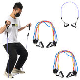 7/11/12 Pcs Fitness Resistance Bands Set Yoga Pilates Elastic Band Exercises Training