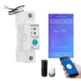 1P 63A eWelink Single Phase Din Rail WIFI Smart Switch Energy Meter Leakage Protection Remote Read KWh Meter Wattmeter Works with Alexa Google