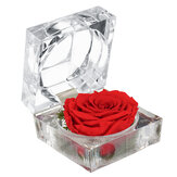 Eternal Flower Decoration Ring Scatola Rose Jewelry Scatola
