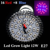 8W E27 16 Red 8 Blue Garden Plant Grow LED Bulb Greenhouse Plant Seedling Growth Light