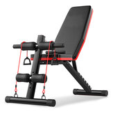 300KG Bearing Multifunctional Foldable Dumbbell Bench 7 Gear Backrest Sit Up AB Abdominal Fitness Bench