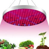 AC85-265V 35W UFO 250LED Grow Light Full Spectrum Growing Lamp para plantas de interior Semeadura de flores Estufa hidropônica