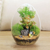 Egg Shaped DIY Moss Micro Landscape Glass Bottle Succulent Plants Vase Home Decoration