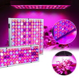 LED Grow Light Hydroponic Vollspektrum Zimmerpflanze Flower Growing Bloom Lampe 85-265V