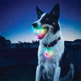 Yani Pet Dog Training Electronic LED 7 couleurs clignotant chien lumineux dents broyage balle Glitter Interactive Toy