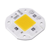 20W Warm / White DIY COB LED Perlina con chip per luce di inondazione AC180-240V