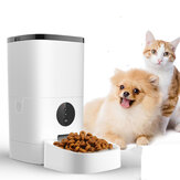 6L Pet Feeder Wifi Remote Control Smart Automatic Food Feeding With Rechargable
