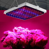 120 LED Grow Light Lamp Vollspektrum Hydroponic Zimmerpflanze Gemüseblume