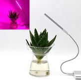 5V 2.5W 10 rood 4 blauw draagbaar USB LED Plant Grow Lamp voor Home Office Garden Greenhouse