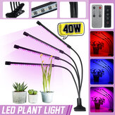 4 Head 40W Full Spectrum LED Grow Light Flexible Topfpflanze Flower Vegetable Growing Lamp mit Timer-Funktion