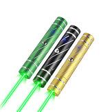 Whist A21 Mini-Laser-Punktstift Wiederaufladbares grünes USB-Hochleistungslicht mit Sternenkappen-Strahllicht für die PPT-Rede in der Ausstellung