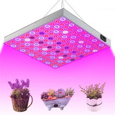 45W 144 LED Plant Grow Light Lamp Full Spectrum For Flower Seed Greenhouse Indoor