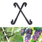 Сад Инструмент 100шт Пластиковые виноградные клипы Растительный цветок Растение Графт Зажим Прививочный виноград