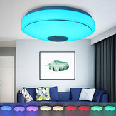 33/40cm Diameter Wifi Smart Bluetooth LED Ceiling Light RGB 3D Sound Music Speeker Dimmable Lamp APP Remote