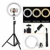 Draagbare LED Ring Light Tripod Stand Live Selfie Holder USB Plug 10 Inch Fill Light voor YouTube Tiktok VK Vlog Makeup