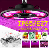 E27 LED Grow Light Spectrum Full Hydroponic Lamp Bulb for Indoor Planta Flower Crescendo AC100-277V