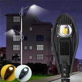 30W LED Ciepły biały / biały Road Street Flood Light Outdoor Walkway Garden Yard Lampa DC12V