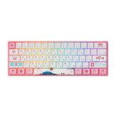 AKKO 3061S Tokyo R2 Mechanical Keyboard 61 Keys Wired Gateron Prelubricate Switch RGB PBT Japanese Keycap Gaming Keyboard