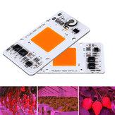 50 Watt Vollspektrum Donnerschutz Smart IC Control LED COB Wachsen Licht Chip für Anlage AC220-240V
