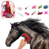 10pcs soins du cheval toilettage kit équestre grattoir brosse peigne sabot choisir étui