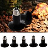 E27 25 W 50 W 75 W 100 W Infravermelho Cerâmico Lâmpada de Aquecimento Pet Réptil Reprodução Lâmpada AC220-240V
