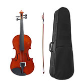 4/4 Acoustic Violin with Case Bow for Violin Beginner