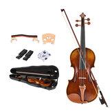 NAOMI 4/4 Полноразмерная скрипка с аксессуарами из джуджуба Скрипка из углеродного волокна Чехол