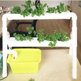 Mini 2 Layer 8 Sites Kit de sistema hidropónico Ebb & Flow Cultivo de aguas profundas DWC Grow Planting Vegetable