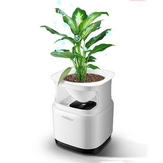Nobico  J009 Mini Original Ecology Green Plant Air Purifier Air Detection Module 3 Layers Filter Air