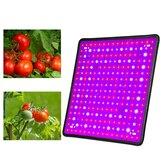 256 LED Grow Light Growing Lamp Full Spectrum Para Flor Interior Planta Hidropônico
